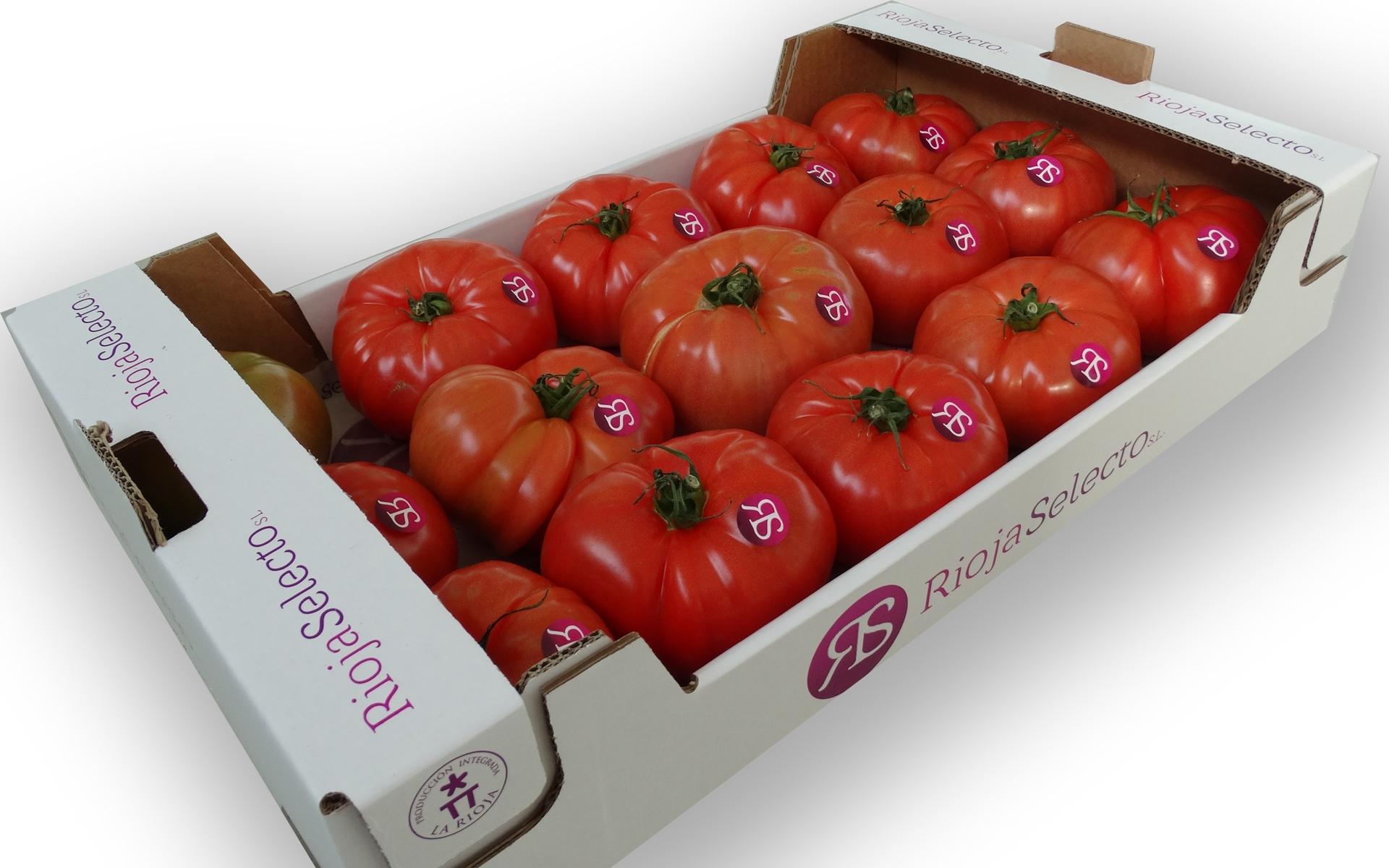 Comprar Tomate de ensalada Extra