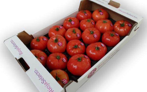 Comprar tomate de ensalada GG
