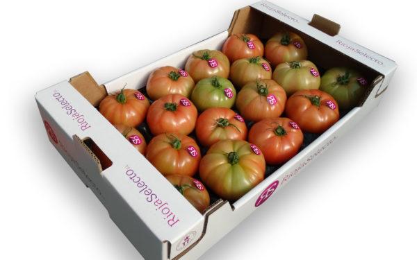 Comprar Tomate GG
